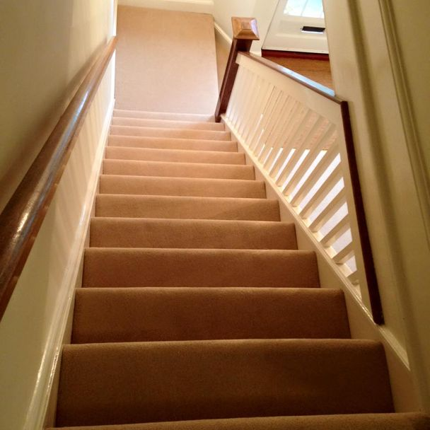 brown carpet stairs